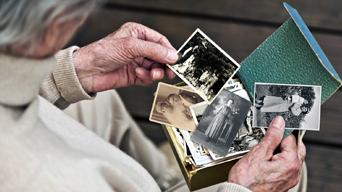 Elderly man looking through photographs